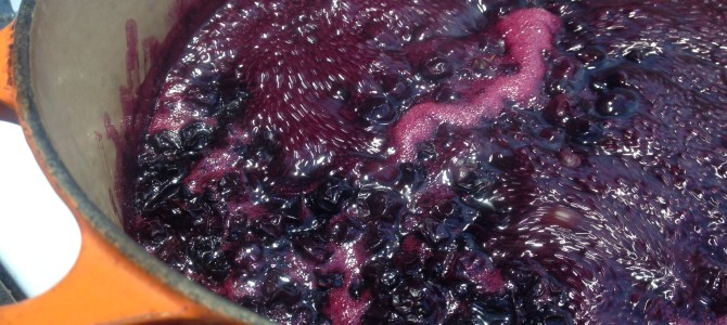 Blueberry Jam – Yes Ma'am!